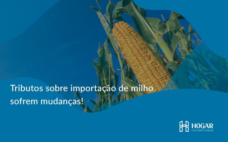 Tributos Sobre Importação De Milho Sofrem Mudanças! Hogar - Contabilidade na Barra da Tijuca